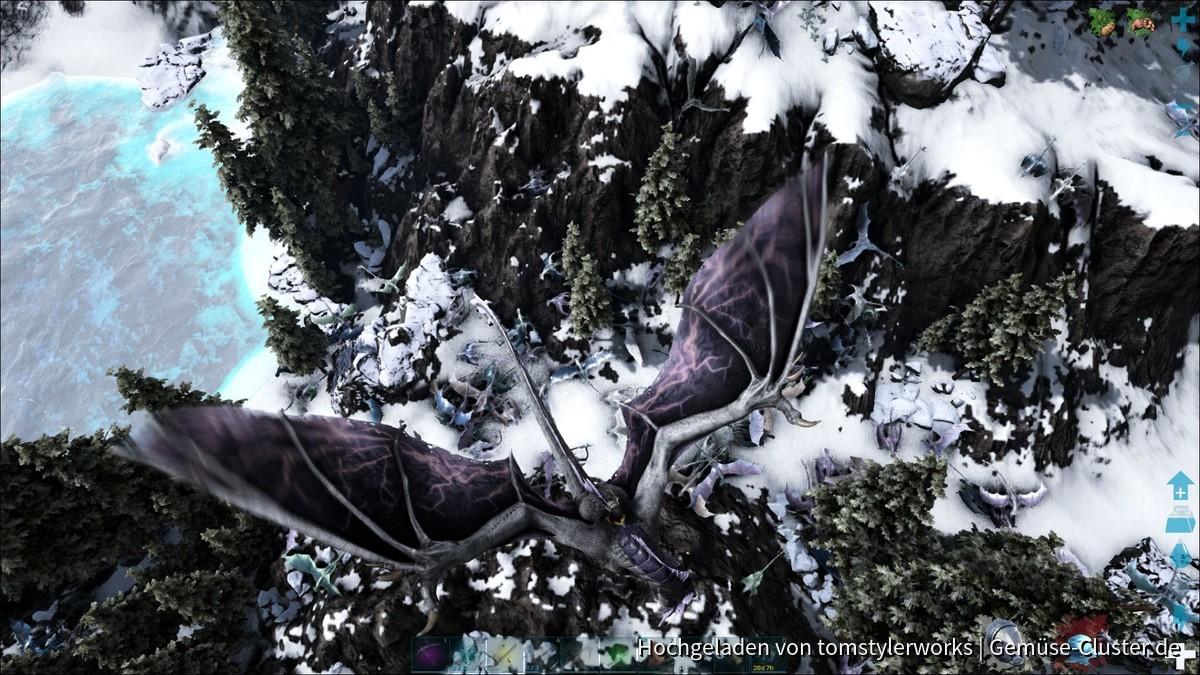Wimmelbild....wieviele Icewyvern siehst du? :D