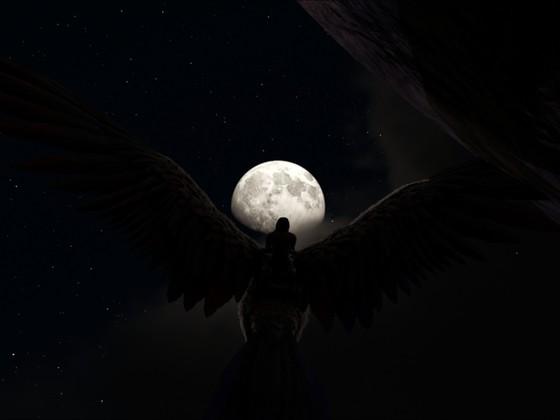 Nacht in Ark