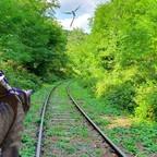 Warum gibt es eigentlich keinen Schienen in ARK?