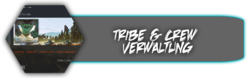 tribehomepage.png
